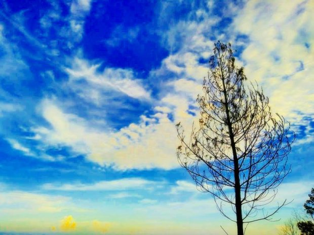 Puncak Burangrang | Nature Walk Bandung | Traveling |Travel Blogger |Blogger BDG| Emak-Emak Blogger