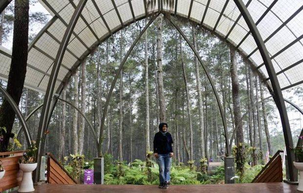 Orchid Forest Cikole | Tempat Wisata Ngehits di Bandung |Genpi Jabar |Blogger Bandung |Nchie Hanie |Menpar Kunjungi Orchid Forest