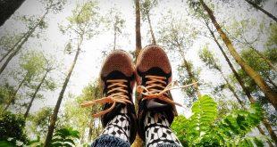 Ini Pelajaran Hidup Yang Bisa Diambil Dari Traveling | hutan | nchiehanie