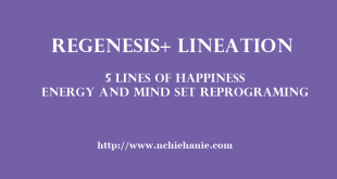 Energy and Mind Set Reprograming (EMR)   Agus Hanafi   Lineation Centre  5 Lines of Happiness   Regenesis+   Stress Management
